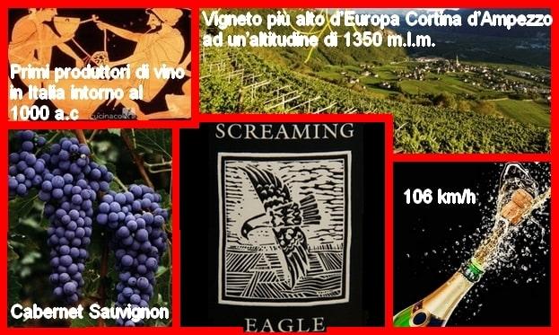 Curiosità sul mondo del vino