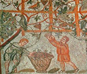 Vini antichi romani
