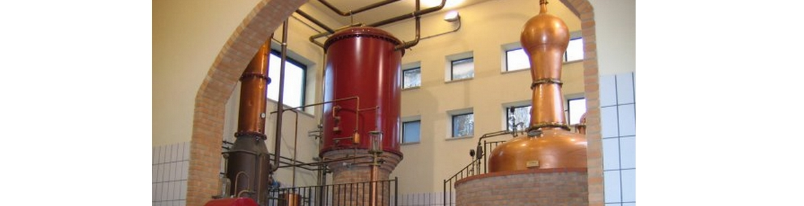 Distillerie Bonollo